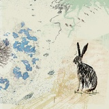 Wild Rabbit Leading Lights (our top selling designs)