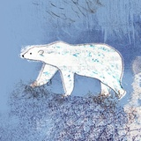 Polar Bear Out and About